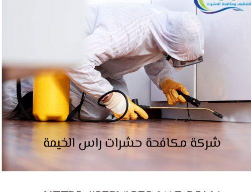 شركة مكافحة حشرات راس الخيمة |0561581557|ابادة الحشرات